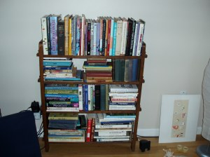stuffed shelf