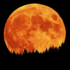 Super Moon coming up this weekend!