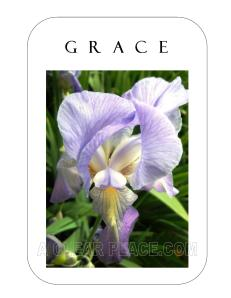 Card of the Week Grace