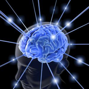 light-brain_132796_4